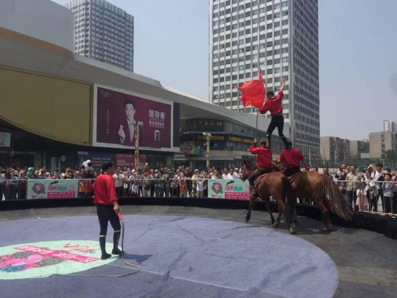 马展览价格多少黑龙江省方正县租供商