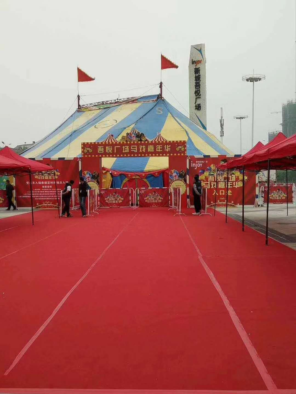 蕉岭县海狮表演一天多少钱