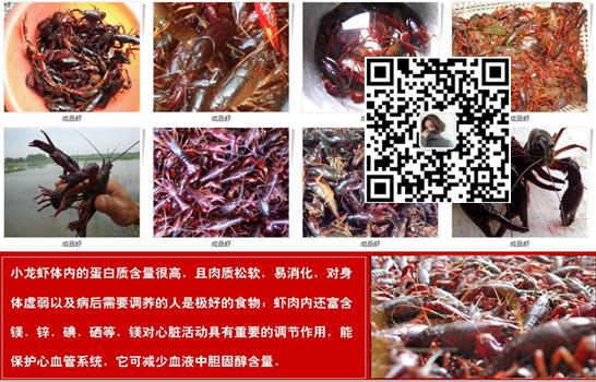 淮南龙虾店面照片