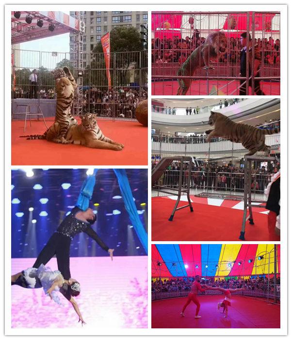 湘潭市目前价格马戏团表演出租