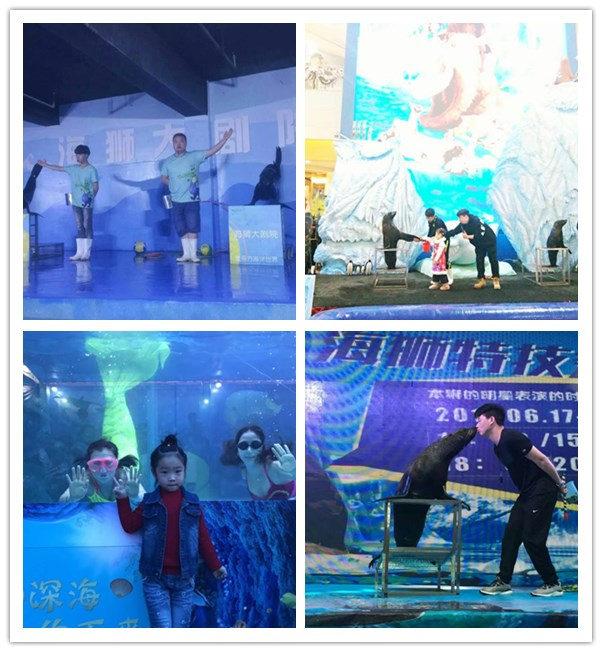 吴江大型马戏团表演出租