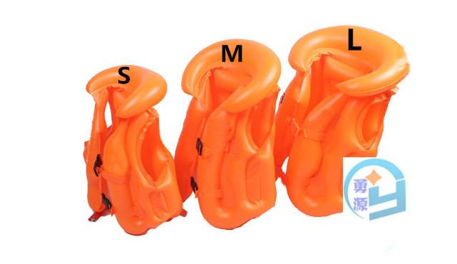 双壳类动物内部结构