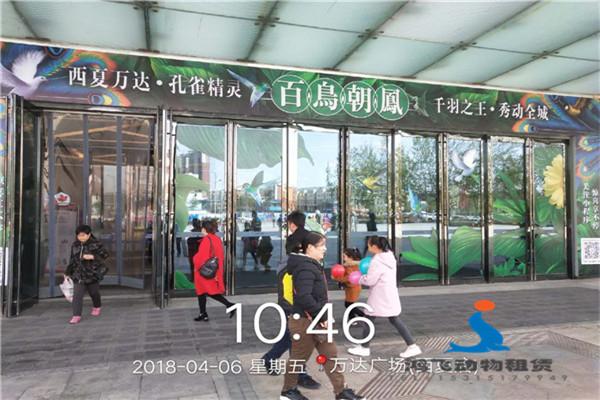 涿州市对外出租马戏团表演的