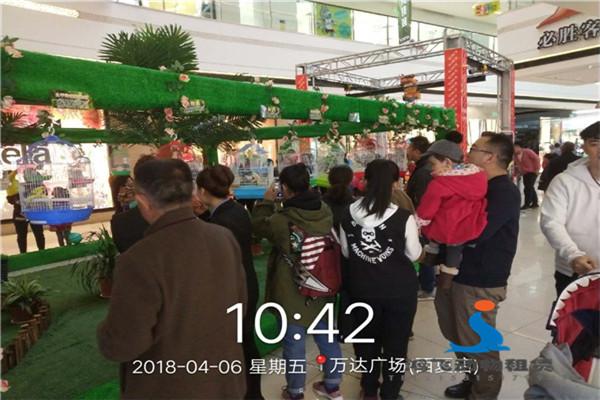 霸州市附近动物表演团马戏团表演出租