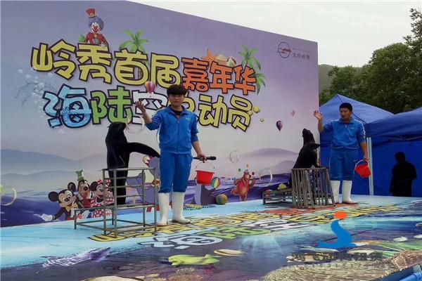 东港哪有马戏团表演租赁精神
