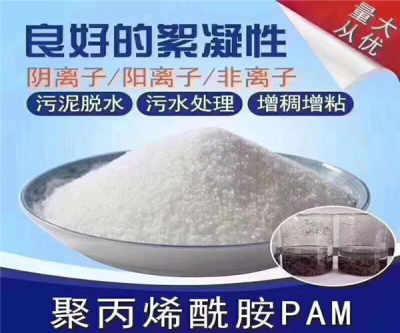 江西赣州阳离子聚丙烯酰胺厂家价格/在线咨询/绿源