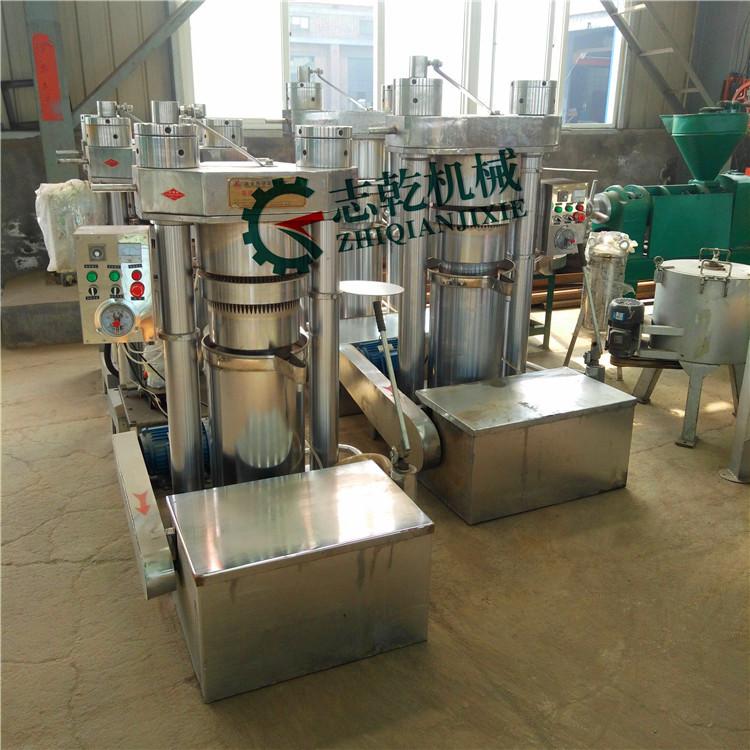 全自动芝麻香油炸油机 立式液压榨油机厂 志乾 花椒麻油榨油机