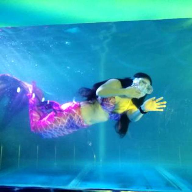 赣州什么地方有海洋生物展展览出租