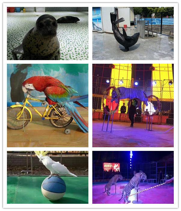 漳州漳浦县海洋生物鱼缸展览出租