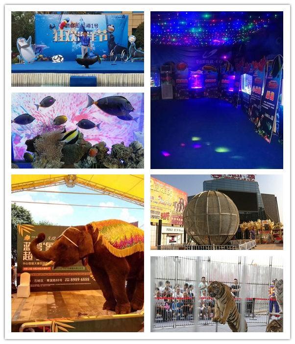 动态:古交市哪有海狮表演出租一站式服务