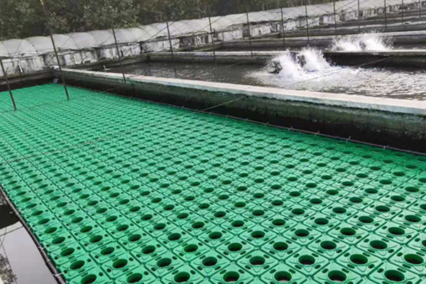 永定区生态水生浮床市场价格