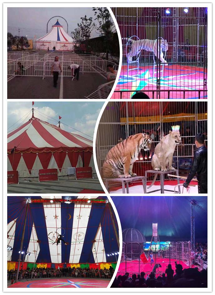 唐山市当地出租海狮表演公司现有档期