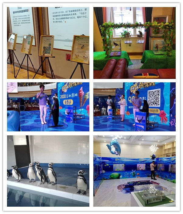 济宁市本地海洋生物鱼缸展出租