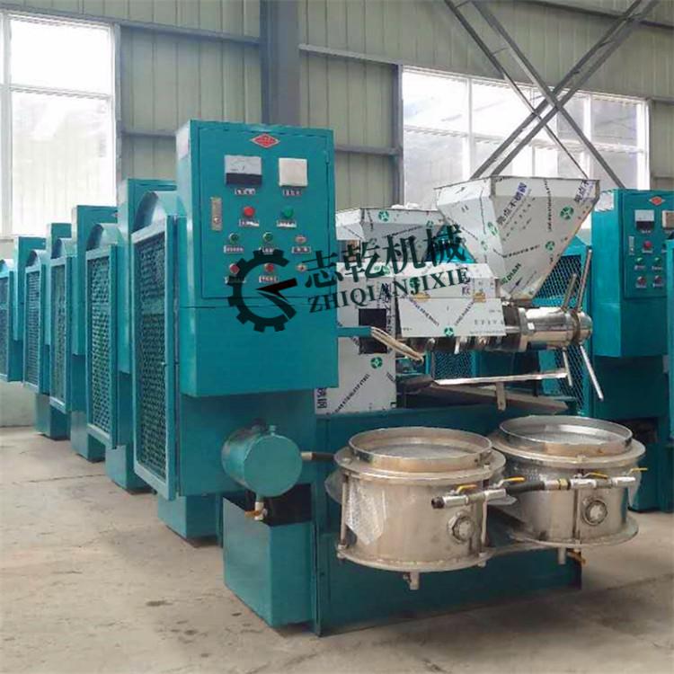 全自动榨油机 志乾 螺杆炸油机 自动排渣菜籽榨油机 花生炸油机