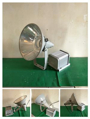 BZY603N防爆手电筒
