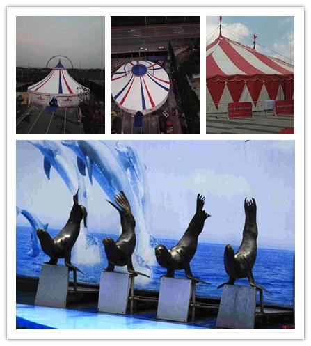 五常市海狮表演出租特色节目