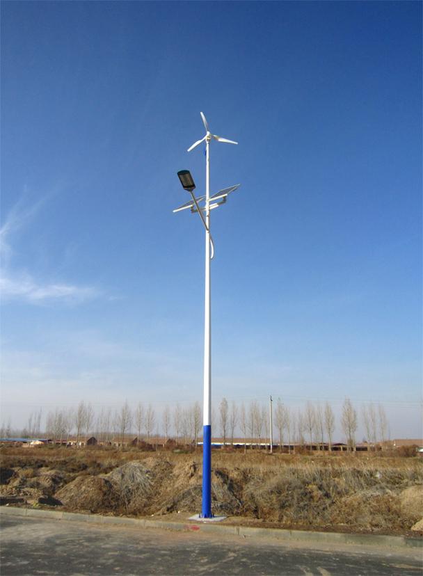 云南临沧6米风光互补路灯厂家