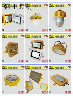 YD4301 YD4301轻便LED移动工作灯
