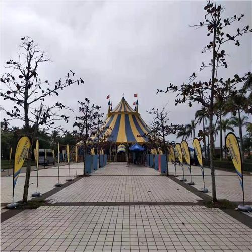 广东省揭阳市鱼表演出租本地供应商