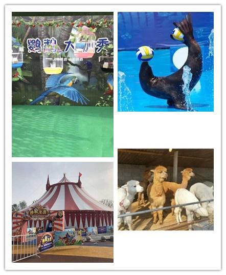 辉县市海洋生物出租