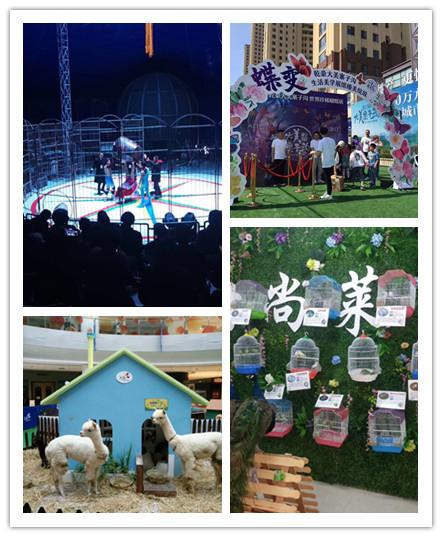 丰城马戏团动物表演出租本地