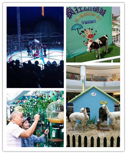 三亚市哪里有马戏团表演出租
