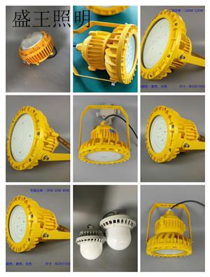 LED應急頂燈G9951 G9951
