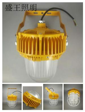 固态免维护顶灯DSFG-900A