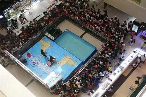 安庆大观区鳄鱼表演出租