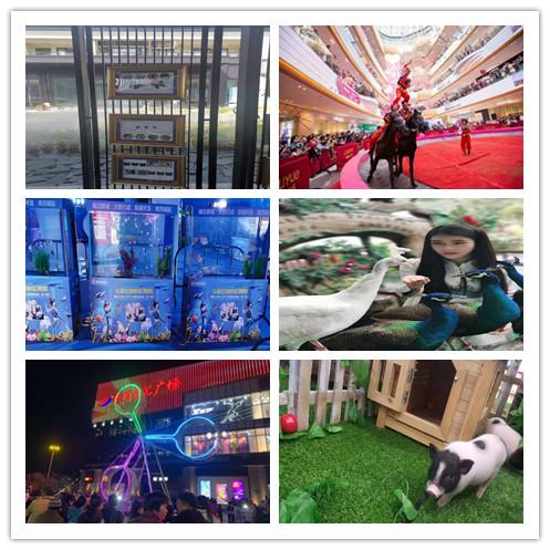灌南县海洋展出租大型庆典