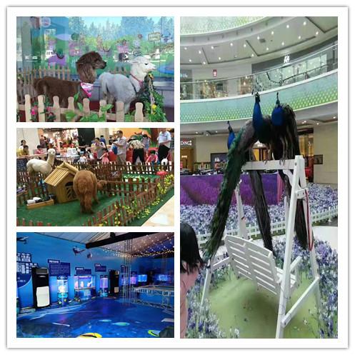 耒阳市羊驼展览出租节目单
