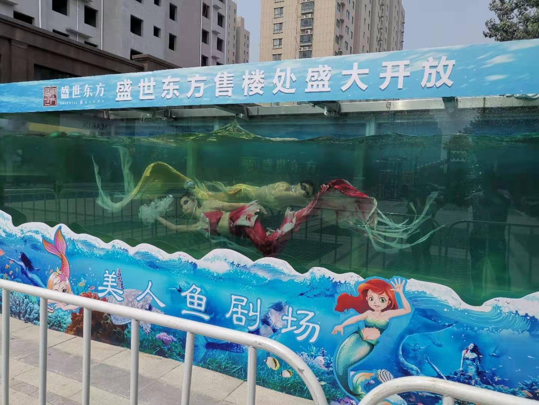 六安市海狮表演出租