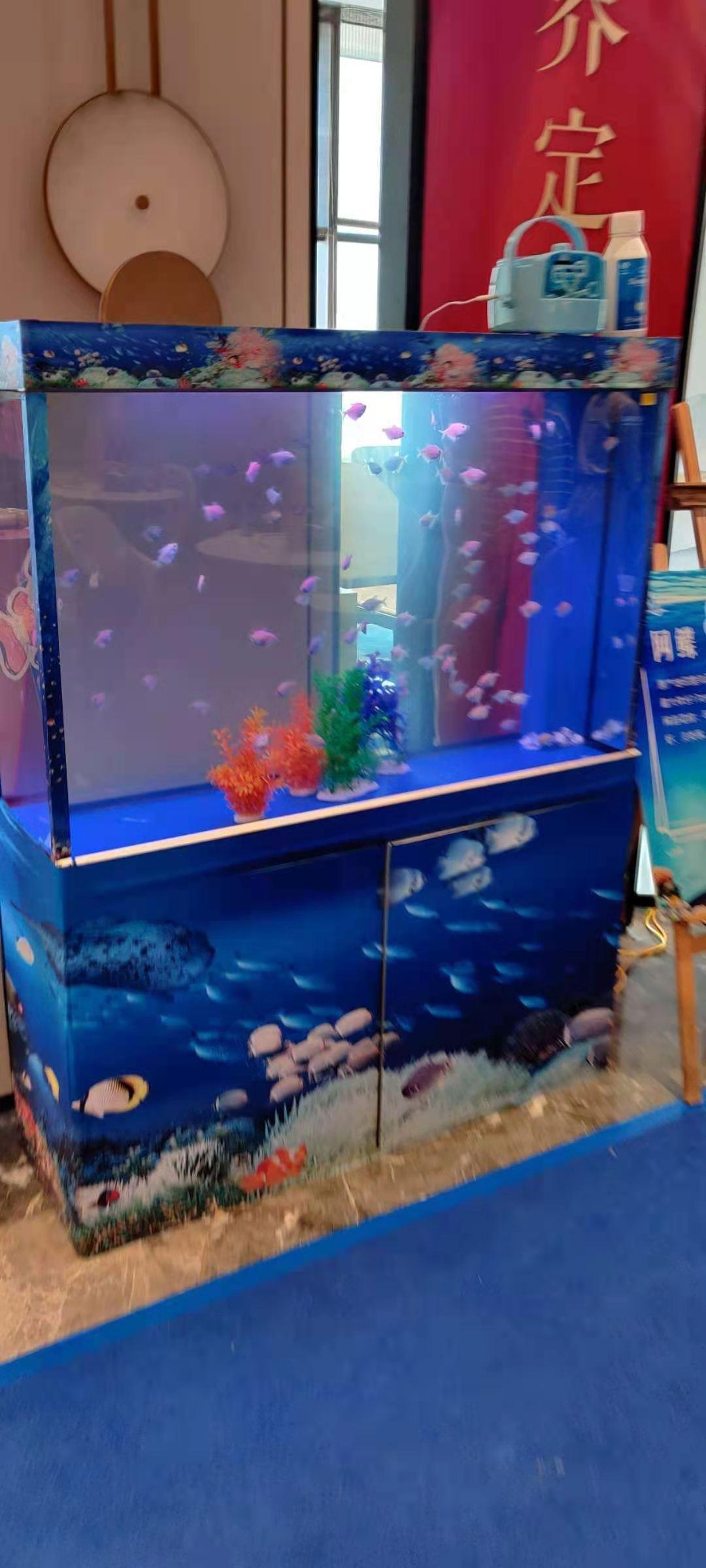龙海市海洋生物展出租