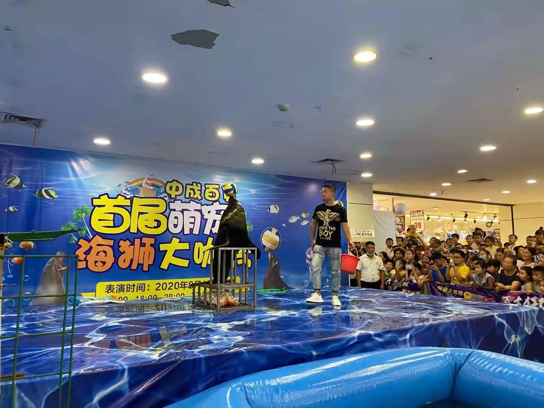 济南市马戏团表演出租