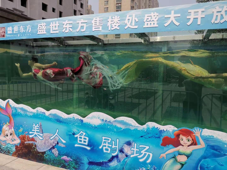安宁市鳄鱼表演出租