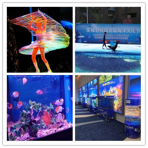 宁安市海洋生物鱼缸展出租租赁