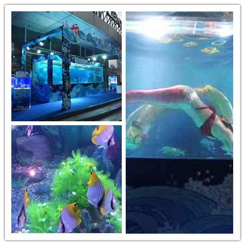 普兰店市海洋生物鱼缸展出租租赁