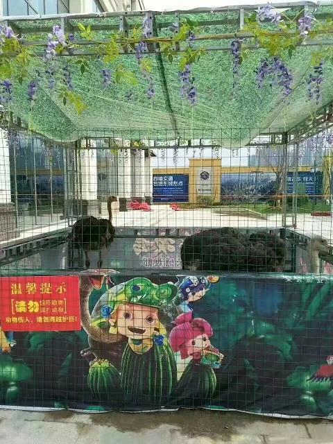 绿春县美人鱼表演出租租赁