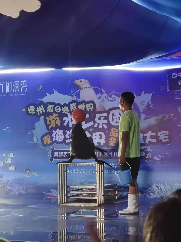 彭州市马戏团表演出租租赁